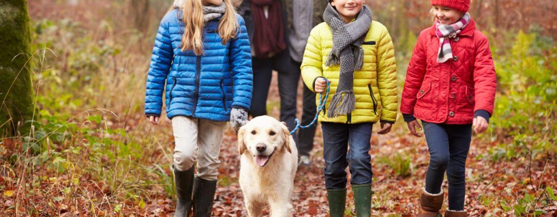 6 savjeta za odgajanje sretnog djeteta