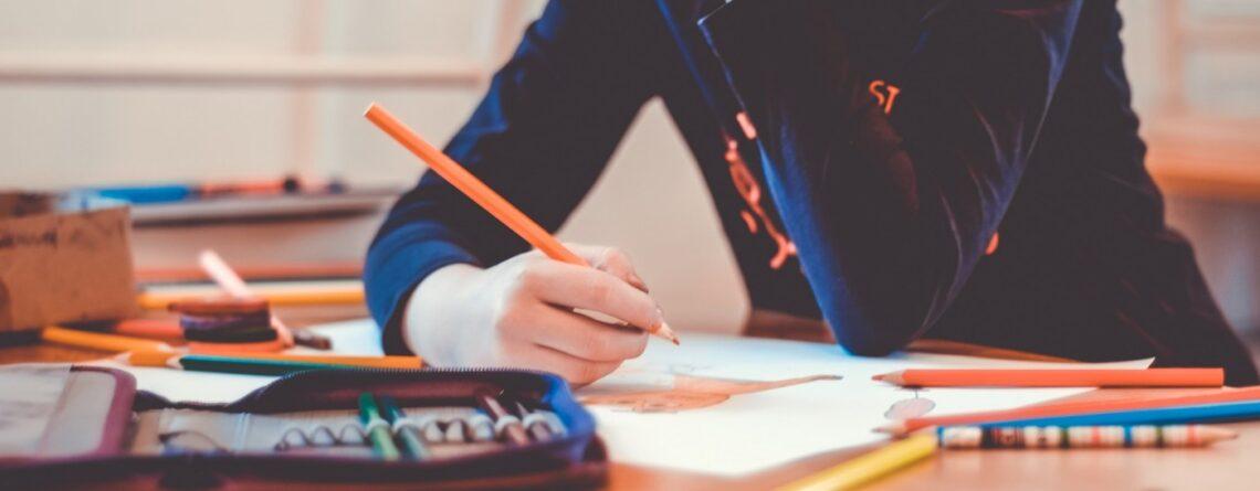 Remo Largo: Pisa studije ne znače ništa